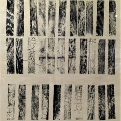 About DNA I, woodcut on Japanese paper, 60 x 53.5 framed cms